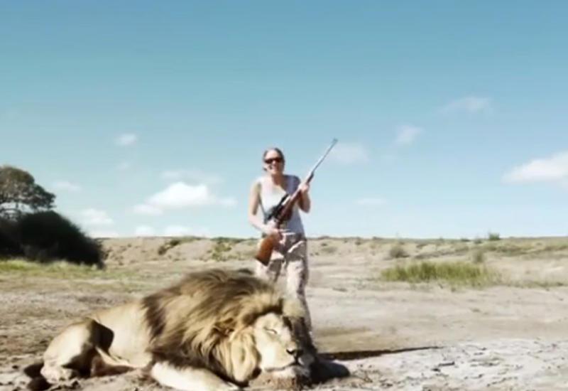 """В Африке лев отомстил охотникам-браконьерам, убившим его друга <span class=""""color_red"""">- ВИДЕО</span>"""