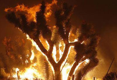 """Ужасная красота пожаров в Калифорнии <span class=""""color_red"""">- ФОТО</span>"""