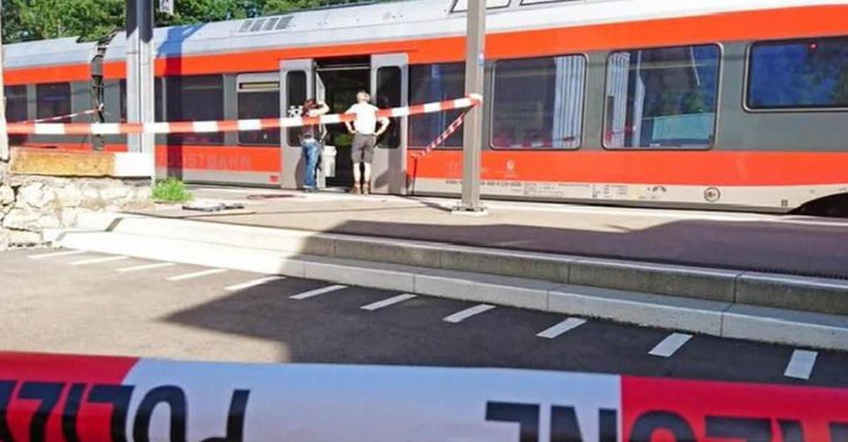 ВАвстрии мужчина сножом устроил резню впоезде, есть раненые