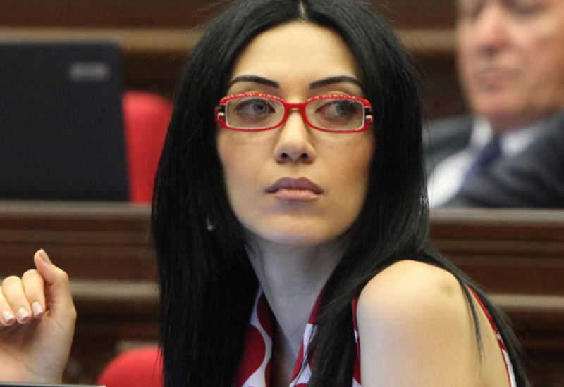 Министр юстиции Армении предложила посадить премьера
