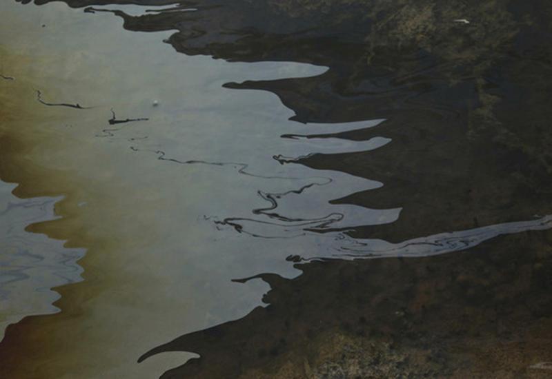 В Красном море разлилась нефть: под угрозой пляжи и коралловые рифы