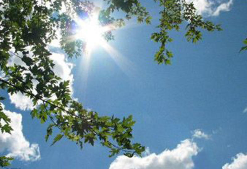Тревога из-за жары в десятках департаментов Франции