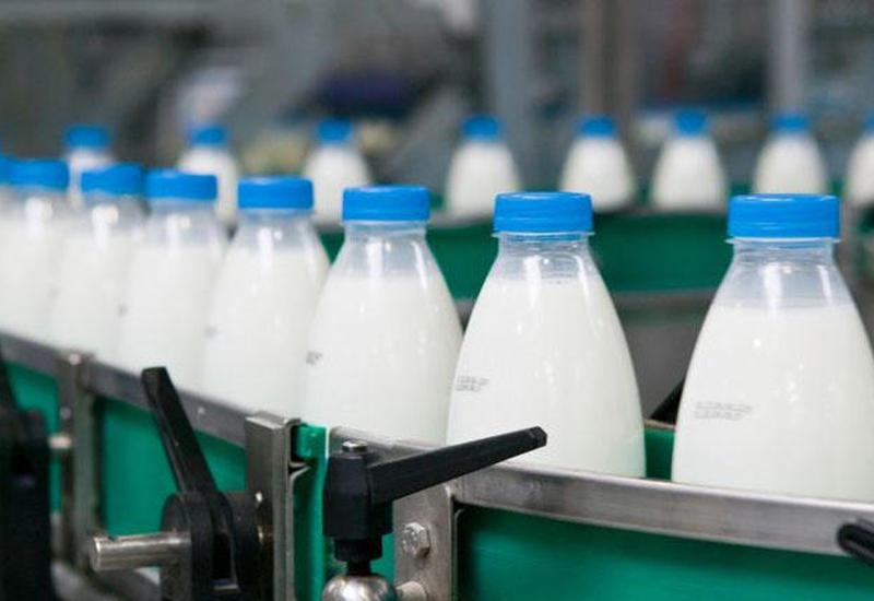 """Российский рынок """"завалят"""" азербайджанским молоком"""