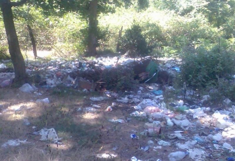 Чиновника в Набрани наказали за горы мусора в лесу