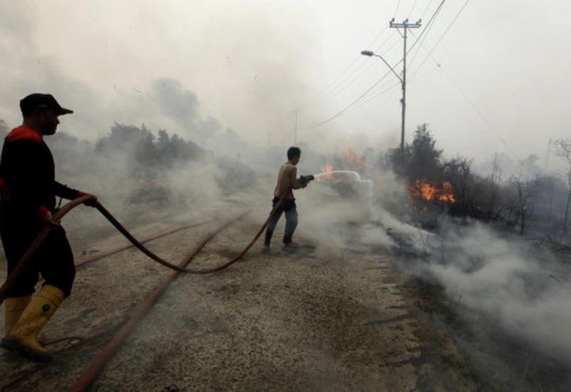 В Индонезии бушуют сильные лесные пожары
