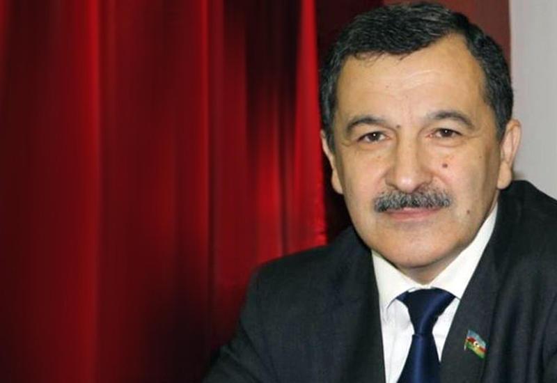 Айдын Мирзазаде: Обновленная Конституция сделает Азербайджан еще сильнее