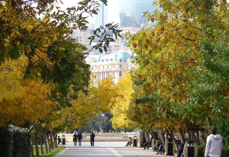 """Каким будет сентябрь в Баку <span class=""""color_red"""">- ПРОГНОЗ</span>"""