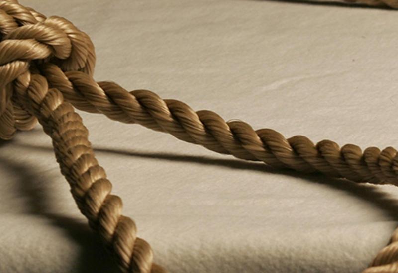 В Армении женщина задушила детей и повесилась
