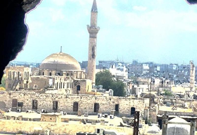 ЛАГ поддерживает создание зон деэскалации в Сирии