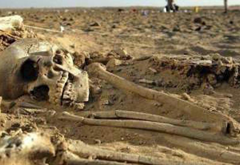 """Найденный в Австралии таинственный скелет породил сенсацию <span class=""""color_red"""">- ВИДЕО</span>"""