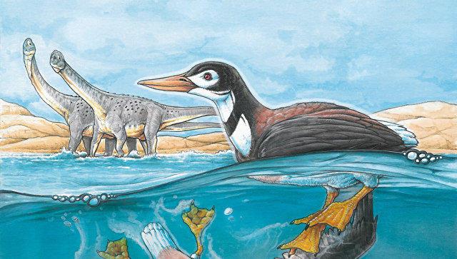 Ученые узнали, как пели первые птицы идинозавры
