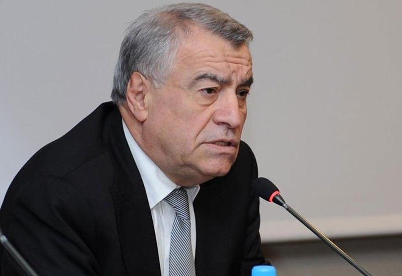 Натиг Алиев едет на переговоры с ОПЕК