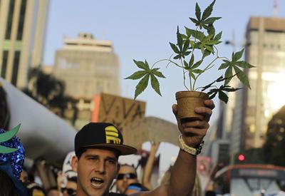 Австралия легализовала марихуану