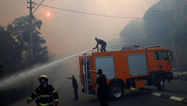 МЧС РФ направит вИзраиль самолеты для тушения лесных пожаров