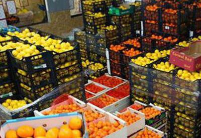 Майкл Лалли об экспорте азербайджанской агропродукции на рынки США