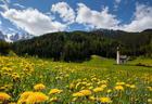 """Величественная красота Альп, утопающих в зеленых лугах <span class=""""color_red"""">- ФОТО</span>"""