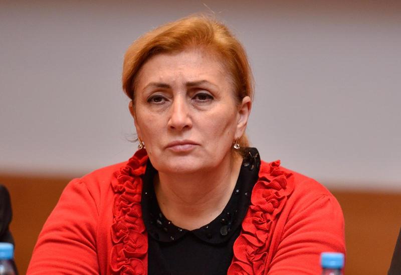 Малахат Ибрагимгызы: Армения совершает провокации для срыва процесса переговоров