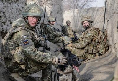 Фотозарисовки британского фотографа, служившего в Афганистане