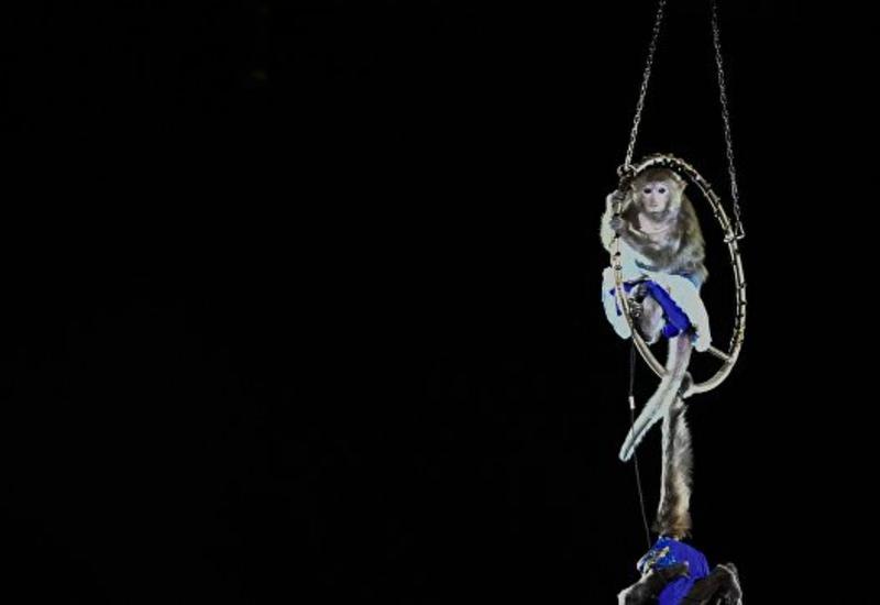 Закрывается один из старейших цирков мира