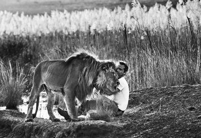 """Самые опасные снимки дикой природы от Дэвида Ярроу <span class=""""color_red"""">- ФОТО</span>"""