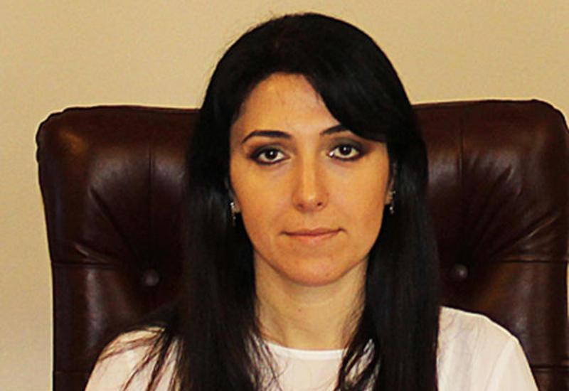Посол: Энергетика - основа отношений между Болгарией и Азербайджаном