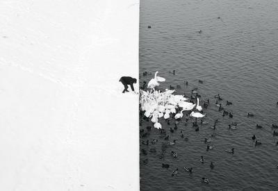 """Лучшие чёрно-белые снимки фотоконкурса Siena International Photography Awards 2016 <span class=""""color_red"""">- ФОТО</span>"""