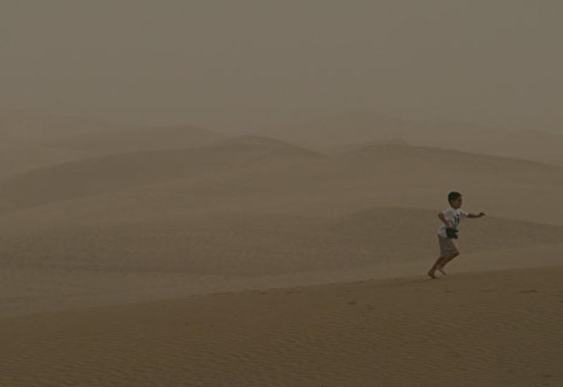 Иран призвал Ирак к борьбе с песчаными бурями