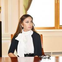 Мехрибан Алиева: Для меня особенно важны ваши искренние слова поддержки