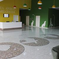 """В Баку начал функционировать Центр спасения и приюта для бездомных животных <span class=""""color_red"""">- ФОТО</span>"""