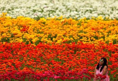 """День весеннего равноденствия 2017: весна вступила в свои права <span class=""""color_red""""> - 15 ФОТО</span>"""