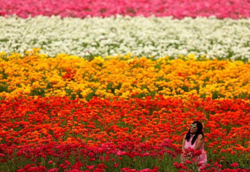 """Как встречали весну в разных уголках мира <span class=""""color_red"""">- ФОТО</span>"""