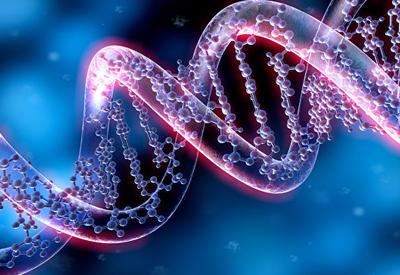 Ученые успешно испытали препарат от старости