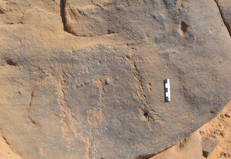 Археологи нашли в Египте наскальные рисунки возрастом 6 тысяч лет
