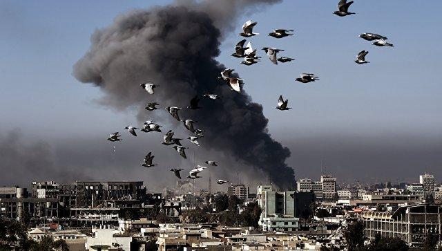 ИГ* начало использовать женщин-снайперов в западных кварталах Мосула