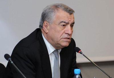 Натиг Алиев примет участие во встрече ОПЕК в Вене
