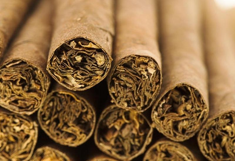 Импорт семян табака в Азербайджане освободят от пошлин