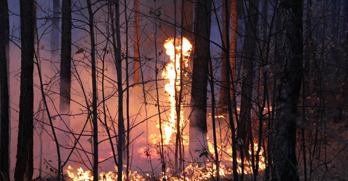 Пучков потребовал все случаи возгораний вБурятии взять под жесткий контроль