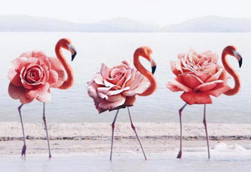 "Photo magic: удивительные фотоколлажи от Луизы Азеведо <span class=""color_red"">- ФОТО</span>"