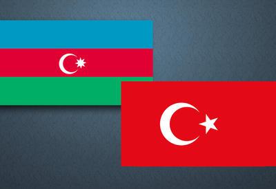 Турция и Грузия обсудят развитие экономических отношений