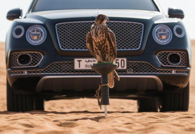 """Роскошный кроссовер Bentley Bentayga подготовили к соколиной охоте <span class=""""color_red"""">- ФОТО</span>"""