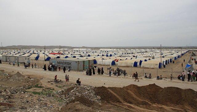 Жительницам освобожденной части Мосула запретили носить никаб
