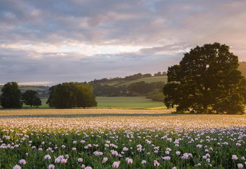 """Потрясающие ландшафтные фотографии из Великобритании <span class=""""color_red"""">- ФОТО</span>"""