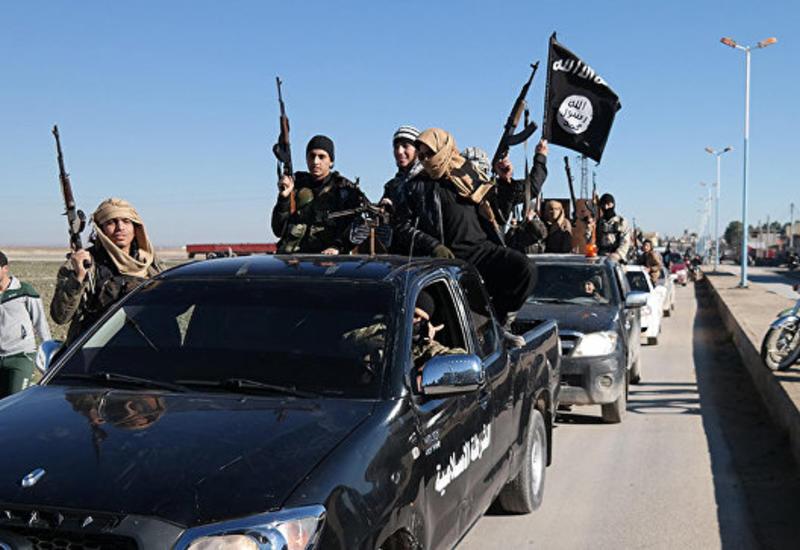 """На севере Сирии нашли захоронение жертв боевиков """"ИГ"""""""