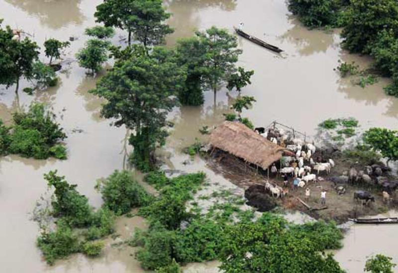 На Шри-Ланке растет число жертв наводнений