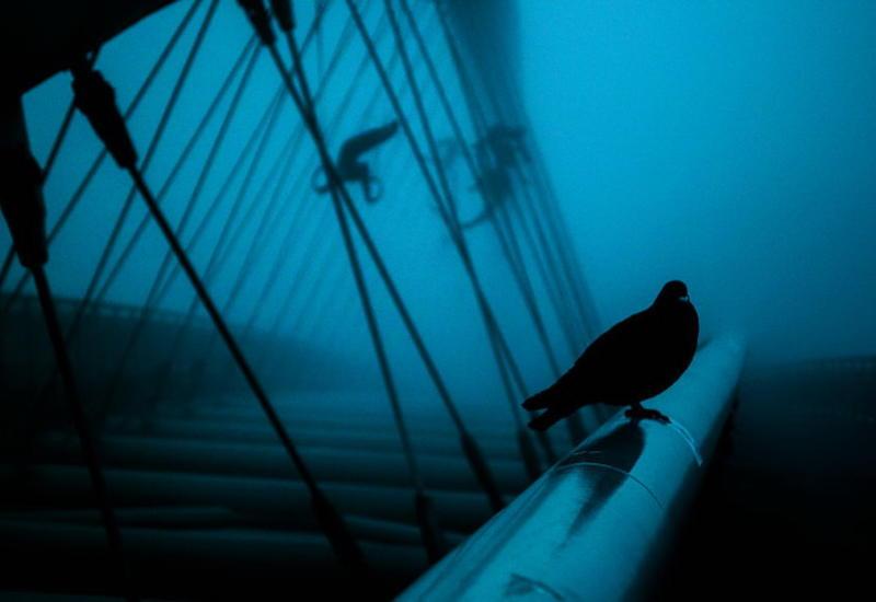 """Город будто под водой: удивительные фотографии Кракова в густом утреннем тумане <span class=""""color_red"""">- ФОТО</span>"""