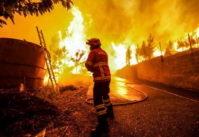 """Мощнейший пожар в Португалии: на что способен удар молнии по дереву <span class=""""color_red"""">- ФОТО</span>"""
