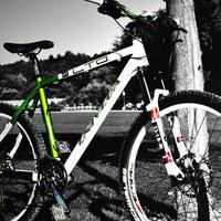Азербайджан освободил импорт запчастей для велосипедов от пошлин