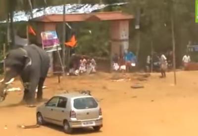 """В Индии слон устроил погром на фестивале <span class=""""color_red"""">- ВИДЕО</span>"""