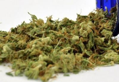 Армянин собирался продать на военной базе в США 300 кг марихуаны