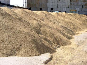 В Азербайджане продлен срок принятия пшеницы для Государственного зернового фонда